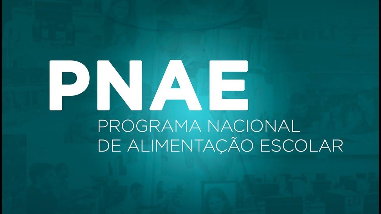 Informe do Pnae traz orientações sobre o repasse dos recursos financeiros de 2021