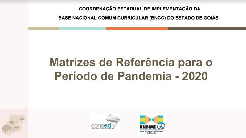 Goiás elabora matrizes de referência para período de pandemia