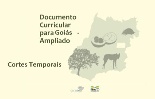 Goiás propõe sistematização das aprendizagens do currículo
