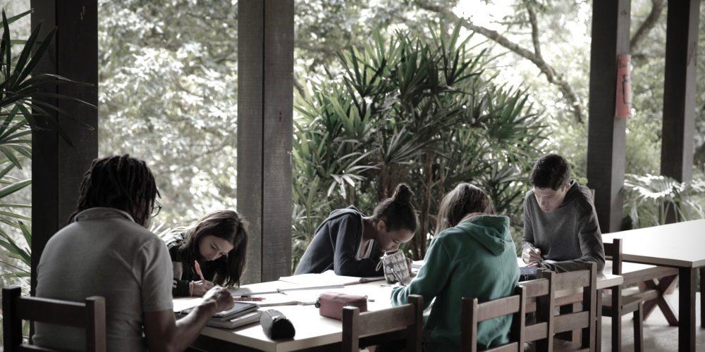 Instituto Alana lança documento com sugestões sobre o planejamento de reabertura das escolas e aprendizagem ao ar livre